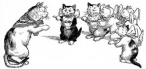 der kater